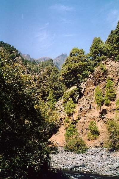 Fotos de las islas Canarias, imagenes para disfrutar