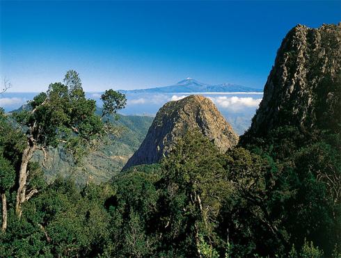 El Teide desde el Parque de Garajonay