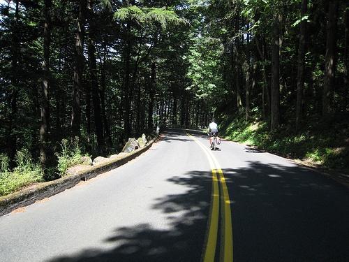 En Bicicleta por la Palma