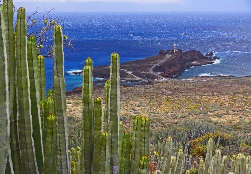El Parque Rural de Teno, en Tenerife