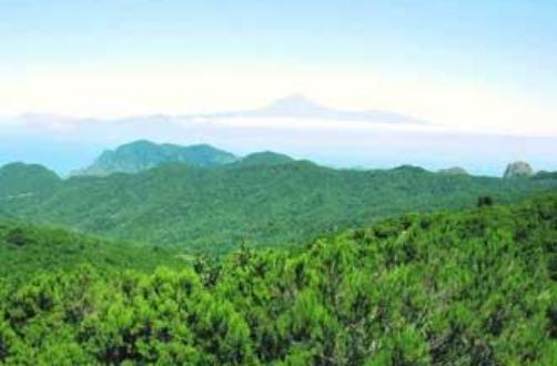 Parque Natural Majona