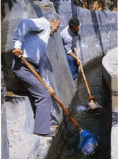 Los llanos de Aridane y el riego del Calabazo