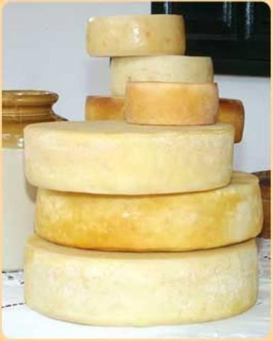 queso de cabra de Garafia