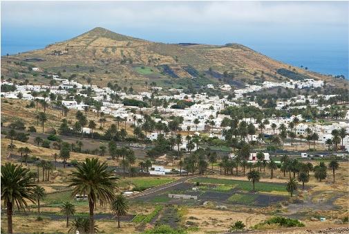 Visitar Haría, el valle de las diez mil palmeras