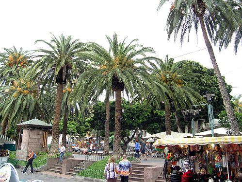 Plaza del Charco en Puerto de la Cruz