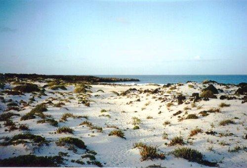 Los caletones, las playas blancas de Lanzarote