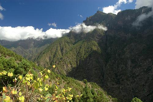 Recomendaciones para ecoturismo en Canarias