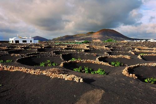 Geria de Lanzarote