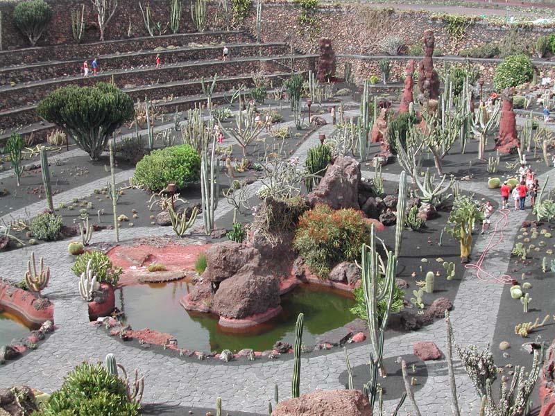 El jard n de cactus en lanzarote - Jardines con cactus y piedras ...